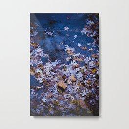 wet leaves. Metal Print