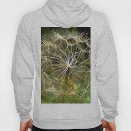 Tragopogon Wildflower Salsify Hoody