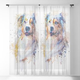 Australian Shepherd Portrait Sheer Curtain