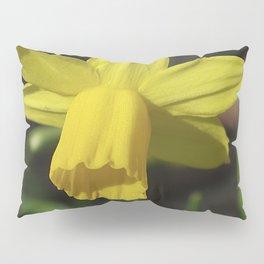 Golden Daffodil Pillow Sham