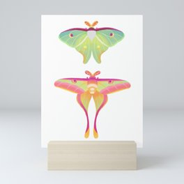 Moth - pastel Mini Art Print