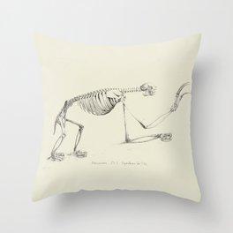 Sloth Skeleton Throw Pillow