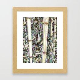Close up big fresh bamboo Framed Art Print