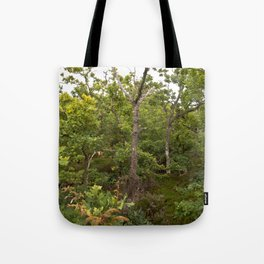 OAK FOREST of Denmark Tote Bag