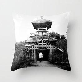 Splendid Ruin 2 Throw Pillow