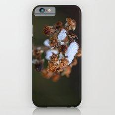 Snow Bound iPhone 6 Slim Case