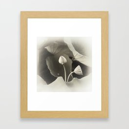 seeds and blossoms Framed Art Print