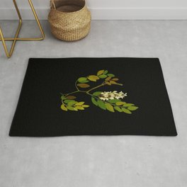 Robinia Pseudacacia Paper Flower Collage Vintage Botanical Floral Art Mary Delany Rug