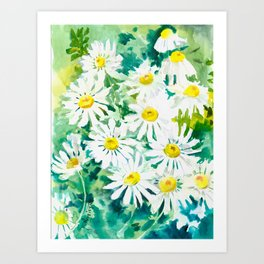 Chamomile Flowers, Herval design Field flowers wild flowers floral art Art Print