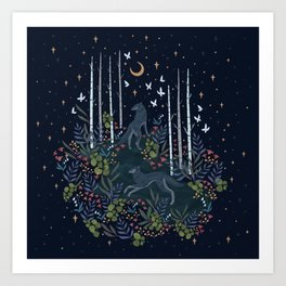 Midnight Exploration Art Print