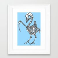 pigeon Framed Art Prints featuring Pigeon by Doe.