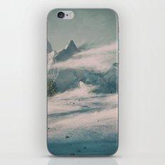 WINTED iPhone & iPod Skin