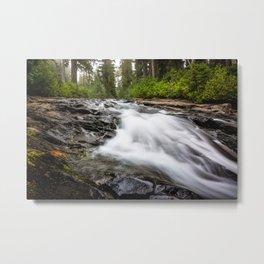 Rush - Paradise River Rushes to Falls in Mt. Rainier National Park Metal Print