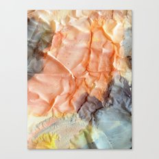 Folds I Canvas Print