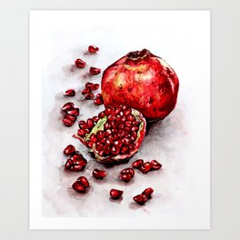 Red pomegranate watercolor art painting Art Print