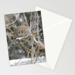 Snowglobe Mourning Dove Stationery Cards