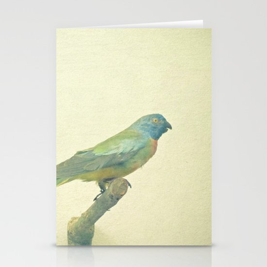 Bird Study #3 Stationery Cards