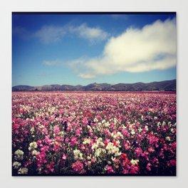 SEA OF FLOWERS Canvas Print