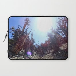 Ancient bristlecone pine forest Laptop Sleeve