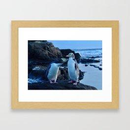 Curio Bay Yellow Eyed Penguins Framed Art Print
