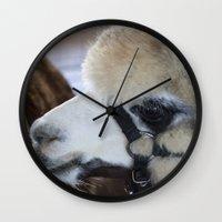 alpaca Wall Clocks featuring Alpaca by Deborah Janke