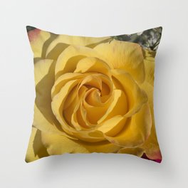 Valentine's Day Roses 23 Throw Pillow