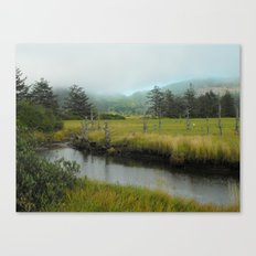 Mystery In Mist Canvas Print