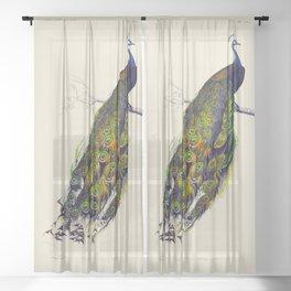Vintage Peacock Sheer Curtain