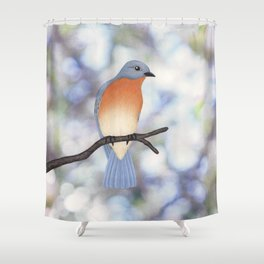 female eastern bluebird bokeh background Shower Curtain