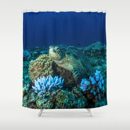 Sea Turtle on the Great Barrier Reef Shower Curtain