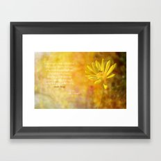 Yellow Daisy (Euryops) Framed Art Print