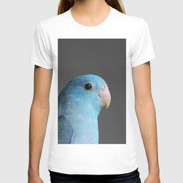 jellybean T-shirt