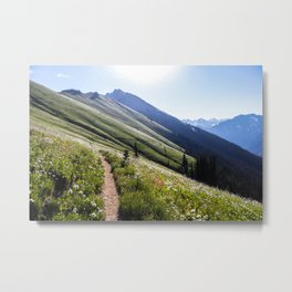 Alpine Meadow Trail Metal Print