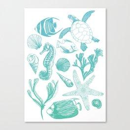 Sea Life  Canvas Print
