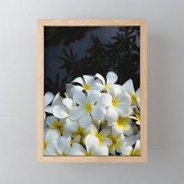 plumeria flower in pond Framed Mini Art Print