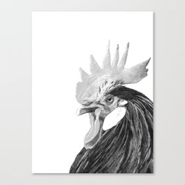 Black and White Rooster Canvas Print