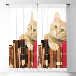 old Books yellow Tiger cat  Blackout Curtain