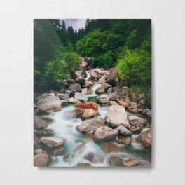 Beautiful cascading river in spring Metal Print