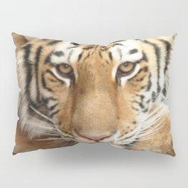Tiger Eyes Pillow Sham