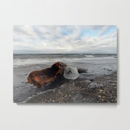 Driftwood And Ice in Spring Metal Print