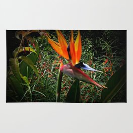 Bird of Paradise Flower Rug