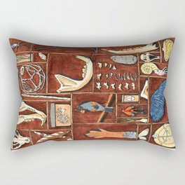 Curious Cabinet Rectangular Pillow