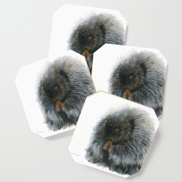 Vinnie the Porcupine by Teresa Thompson Coaster