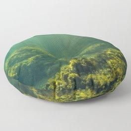 Underwater 2.0 IV. Floor Pillow