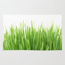 liaves rice Rug