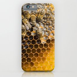 Honeycomb with bees iPhone Case