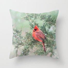 Christmas Bird (Northern Cardinal) Throw Pillow