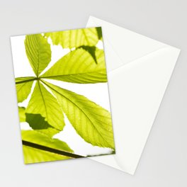 Aesculus horse chestnut foliage Stationery Cards