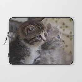 Kittens Laptop Sleeve