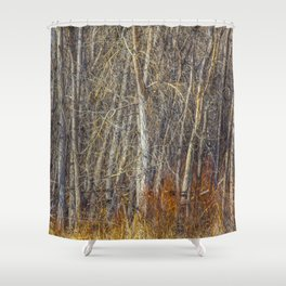 Denver Woodland Shower Curtain
